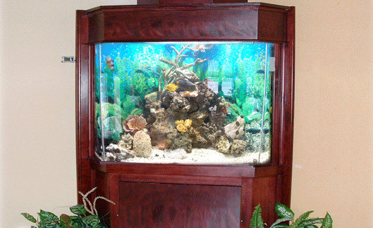 Meuble d 39 aquarium grand format - Meuble aquarium sur mesure ...